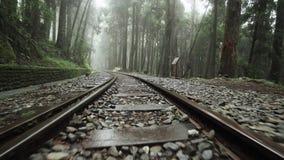 Promenera gammal Desolete järnväg i skog Alishan för sceniskt område med mist, ogenomskinlighet och dimma perspektivsikt i Taiwan lager videofilmer