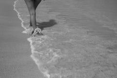 Promenera kusten Royaltyfria Bilder