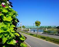 Promenera vid floden Drava på en solig sommardag i den kroatiska staden Osijek Fotografering för Bildbyråer