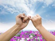 Promesa de la mano Foto de archivo