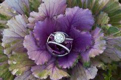Promesa del diamante Fotos de archivo libres de regalías