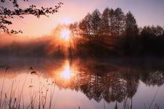 promienia pierwszy słońce Zdjęcie Stock