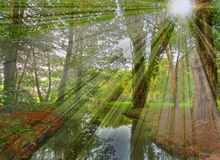 promienia sceny słońce Obraz Stock
