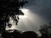 promienie światła Obrazy Royalty Free