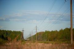 Promienie położenia słońce cią świerczynę i linie energetyczne Zdjęcie Stock