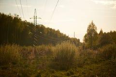 Promienie położenia słońce cią świerczynę i linie energetyczne Zdjęcia Royalty Free