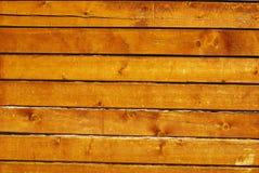 promienieje cedrowy naturalny ścienny drewnianego fotografia stock