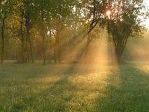 promienieje słonecznego obrazy stock
