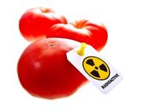 Promieniotwórczy pomidory Obrazy Royalty Free