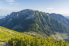 Prominent peak of Western Tatras Stock Photography