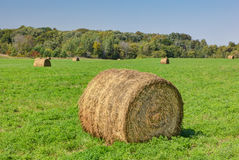 Prominent Single Haystack Stock Photos