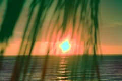 Sunset through leaves of palm trees on Indian ocean. Promise of heavenly rest. Sunset through leaves of palm trees on Indian ocean, Tropical journey. Well Stock Image