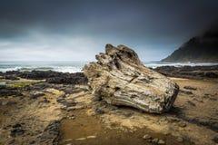 Promontório da costa - Oregon fotografia de stock