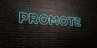 PROMOTE -Realistic Neon Sign on Brick Wall background - 3D rendered royalty free stock image. Can be used for online banner ads and direct mailers Royalty Free Stock Photos