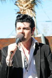 De Kunstenaar van de Hulde van Elvis Stock Foto