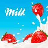 promotion d'annonce de saveur de yaourt de la fraise 3d éclaboussure de lait avec des fruits d'isolement sur le blanc Images libres de droits