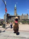Promotion d'exhiibit de dinosaure à Ottawa image stock