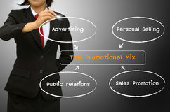 The promotion mix diagram. Business woman drawing The promotion mix diagram Stock Photography