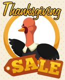 Button with Turkey and Broken Price Tag for Thanksgiving Sale, Vector Illustration Royalty Free Stock Image