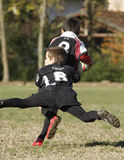 Promotional tournament of youth rugby. 20 teams of north Italy, with children under 11 years, have participated in a tournament of youth rugby in Pordenone ( Royalty Free Stock Image