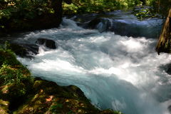 Prompt  impetuous white water in the river. Flow, stream Stock Photos