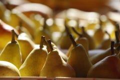 Päron på marknad Royaltyfri Fotografi