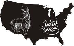 Pronghorn i Usa konturu mapa Obraz Stock