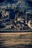 Pronghorn och berg Arkivfoto
