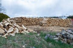 Pronto della legna da ardere tagliato Fotografie Stock