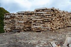 Pronto della legna da ardere tagliato Immagine Stock Libera da Diritti