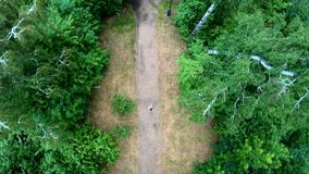 Propósito aéreo de activar en el parque Vertical, de arriba hacia abajo metrajes
