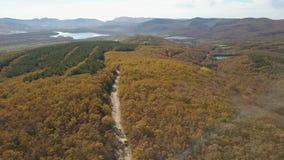 Propósito aéreo de la conducción de automóviles a través del bosque en montañas Conducción en el camino hermoso de la montaña en  metrajes