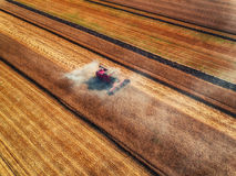 Propósito aéreo de la cosecha mecánica de la agricultura de la máquina segadora Fotos de archivo