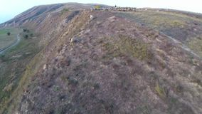 Propósito aéreo de pastar animales en tierra fértil almacen de video