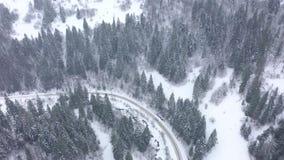 Propósito aéreo de una conducción de automóviles a lo largo de un camino rodeado por el bosque del invierno almacen de video