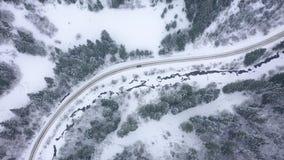 Propósito aéreo de una conducción de automóviles a lo largo de un camino rodeado por el bosque del invierno metrajes
