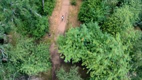 Propósito aéreo del ciclo en el parque Vertical, de arriba hacia abajo almacen de video