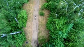 Propósito aéreo del ciclo en el parque Vertical, de arriba hacia abajo metrajes