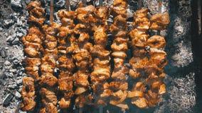 Propósito superior de preparar kebabs en los pinchos sobre un fuego en naturaleza almacen de metraje de vídeo