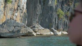 Propósito trasero posterior de la navegación de la chica joven en el barco y de la mirada al paisaje hermoso de la naturaleza dur almacen de metraje de vídeo