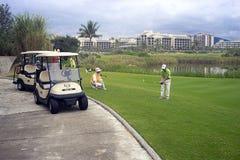 Propósitos del golfing del golf Imagenes de archivo