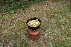 Propaangasfles voor het Kamperen het Koken stock foto's
