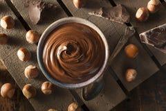 Propagação caseiro da avelã do chocolate imagens de stock