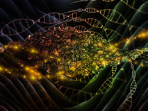 Propagation of DNA Royalty Free Stock Images