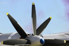 Propeller motor plane on a Sunny day Royalty Free Stock Photo