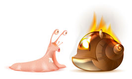 Property Insurance. Conch shell snail fire. Isolated on white vector illustration Royalty Free Stock Images