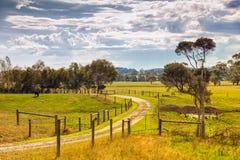 Propiedad de la granja en Australia imagen de archivo libre de regalías