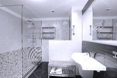 Propiedades inmobiliarias del cuarto de baño Fotografía de archivo libre de regalías