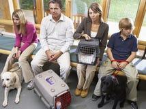 Propietarios que se sientan en área de recepción de los veterinarios Fotos de archivo libres de regalías
