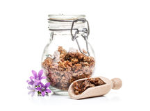 Propolis Royalty Free Stock Images